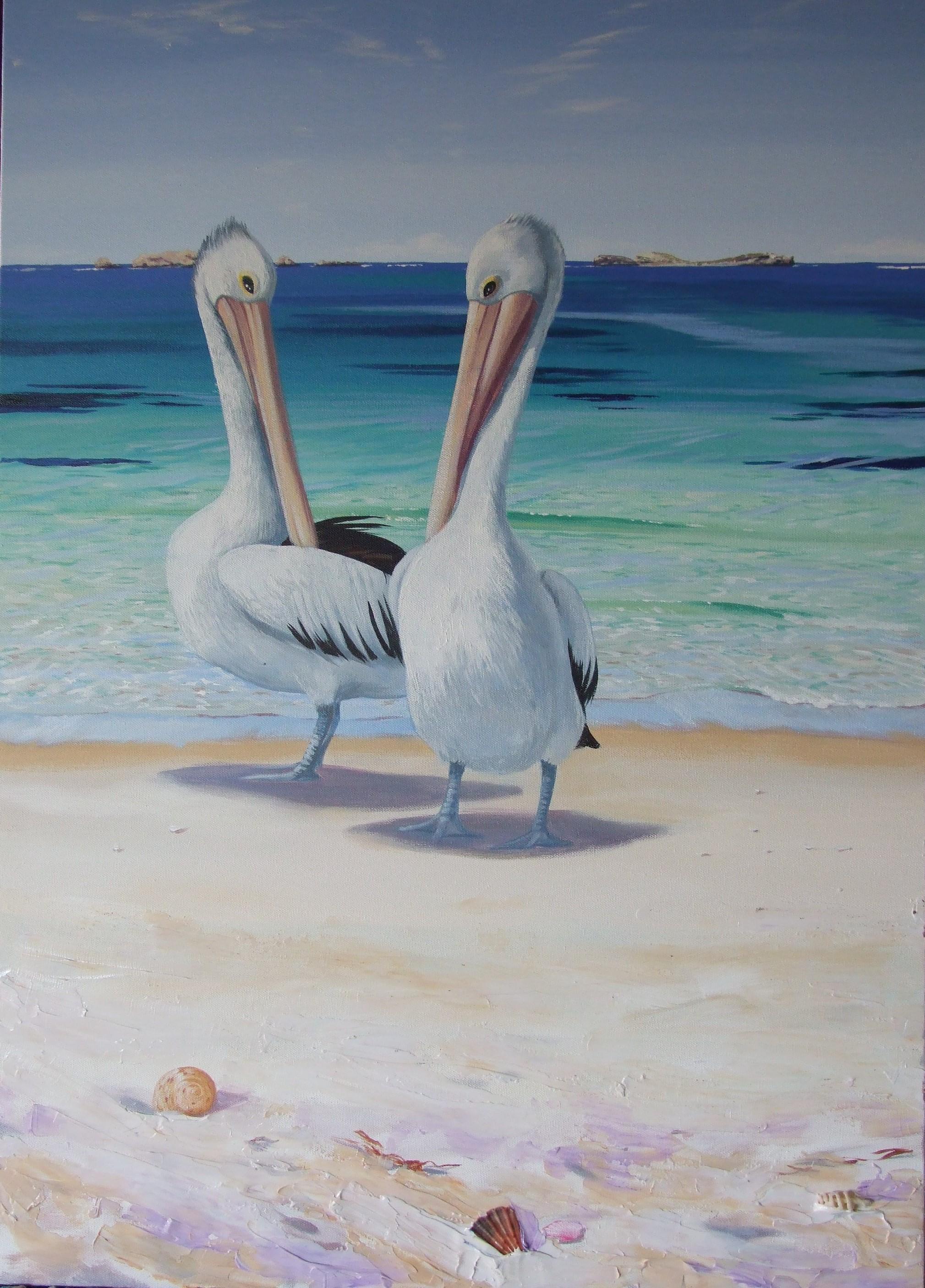 Resting-Pelicans, 1200 x 800mm